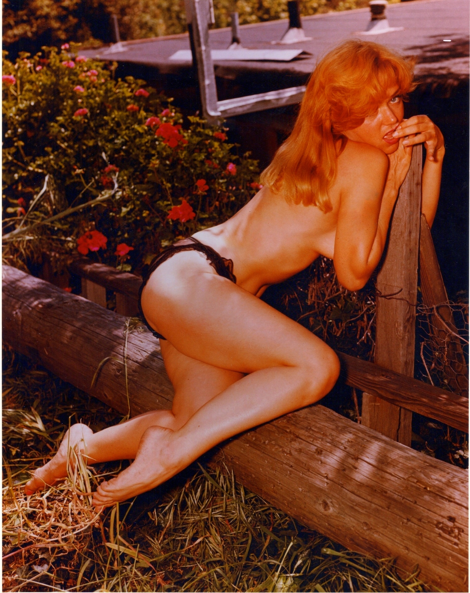 Yvette vickers nude pity, that